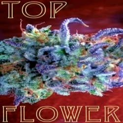 Top Flower Murrieta Ca Reviews Menu Photos