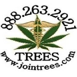 Trees by Healthy Living - Livermore