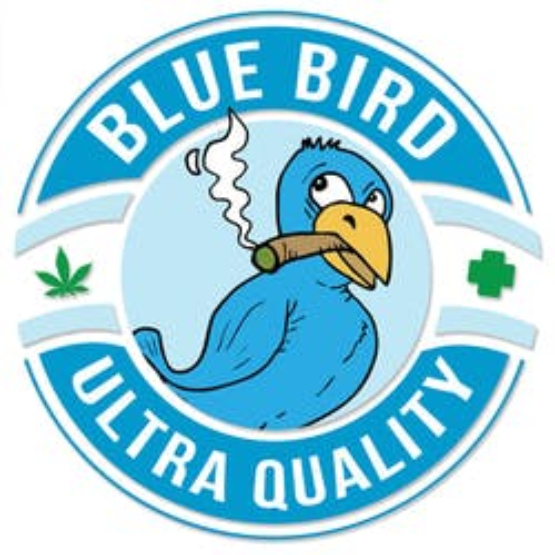 Blue Bird Delivery - Laguna Niguel