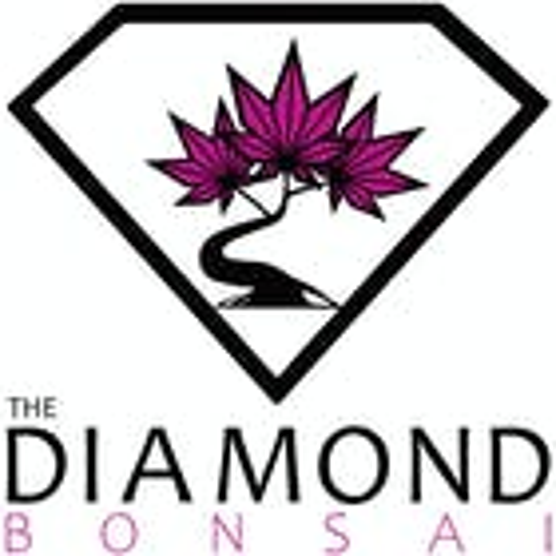 The Diamond Bonsai