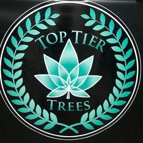 Top Tier Trees - Irvine