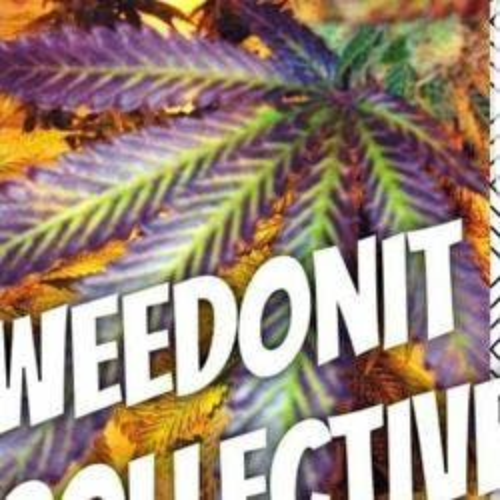 Weedonit marijuana dispensary menu