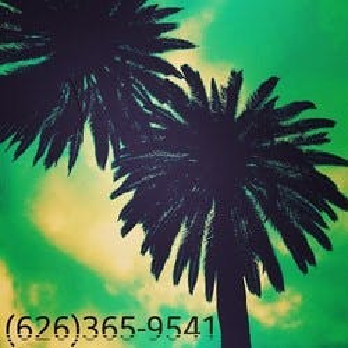 Sunshine - Pasadena