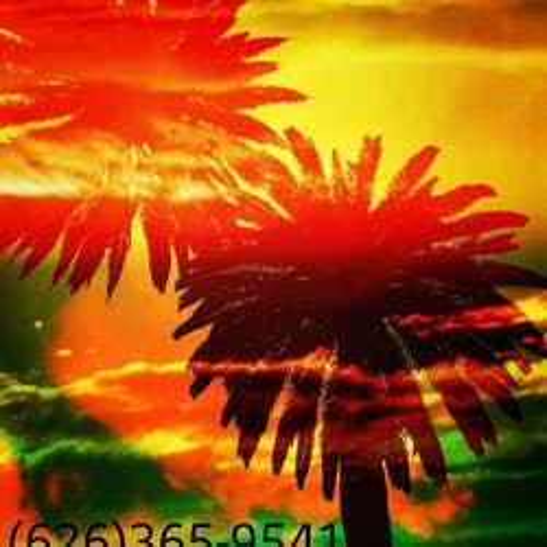 Sunshine marijuana dispensary menu