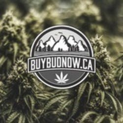 Buy Bud NOW Medical marijuana dispensary menu