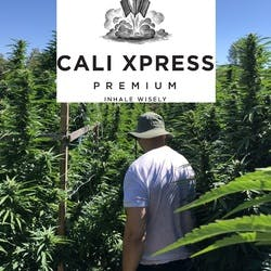 Cali Xpress Medical marijuana dispensary menu