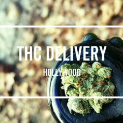 Hollywood THC Delivery