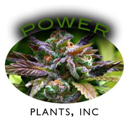 Power Plants Inc Medical marijuana dispensary menu