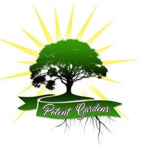 Potent Gardens marijuana dispensary menu