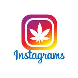 Instagrams Medical marijuana dispensary menu