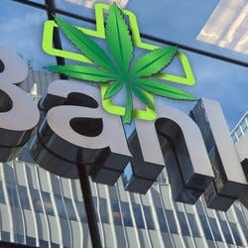 WeedBank
