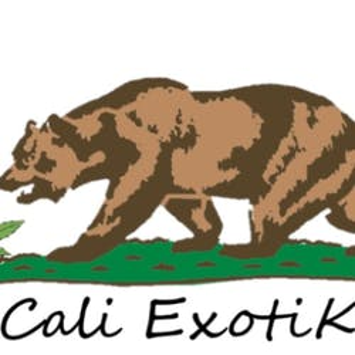 Cali Exotiks marijuana dispensary menu