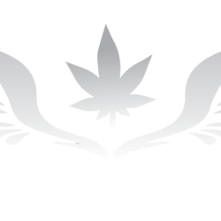 SkyHighExotics marijuana dispensary menu