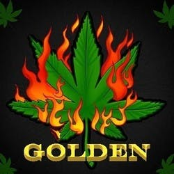 The Golden Herb Collective