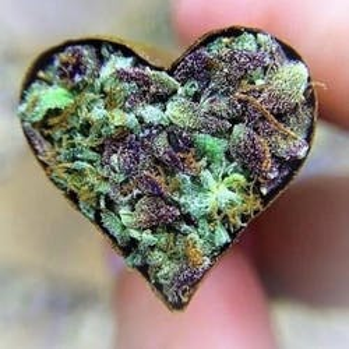 ELEX Medical marijuana dispensary menu