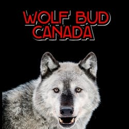 Wolf Bud marijuana dispensary menu