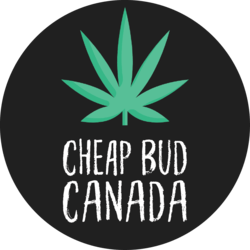 CHEAP BUD CANADA Medical marijuana dispensary menu