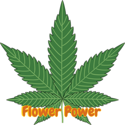 FLOWER POWER Medical marijuana dispensary menu