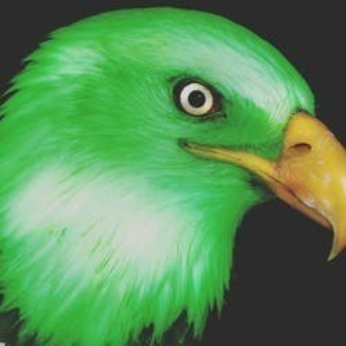 Green Eagle Collective marijuana dispensary menu