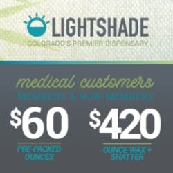 Lightshade - Holly Medical