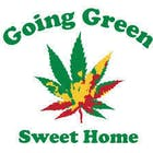 Going Green Sweet Home