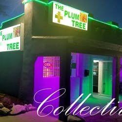 The Plum Tree Collective