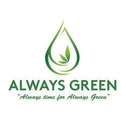 Always Green  Med Medical marijuana dispensary menu