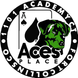 Ace's Place - Recreational