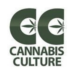 Cannabis Culture - Beatty
