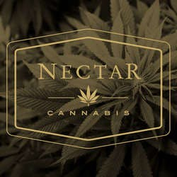 Nectar  Tillamook marijuana dispensary menu
