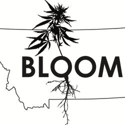 Bloom marijuana dispensary menu