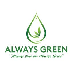 Always Green  Rec Recreational marijuana dispensary menu