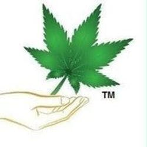Nova Budds Sydney Medical marijuana dispensary menu