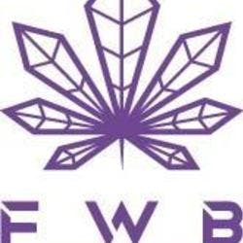 Fountain of Wellbeing - FWB