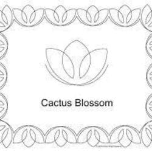 Cactus Blossom marijuana dispensary menu
