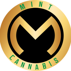 The Mint Cannabis