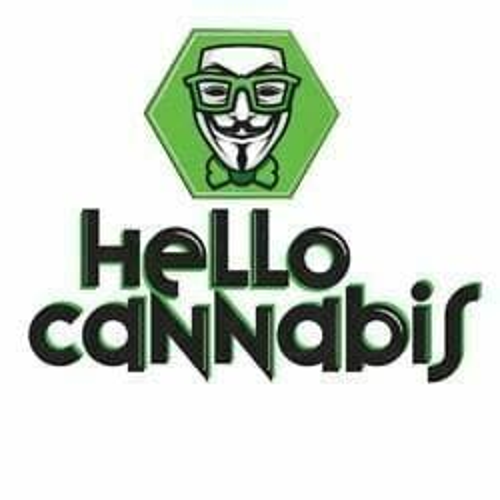 Hello Cannabis - Vista