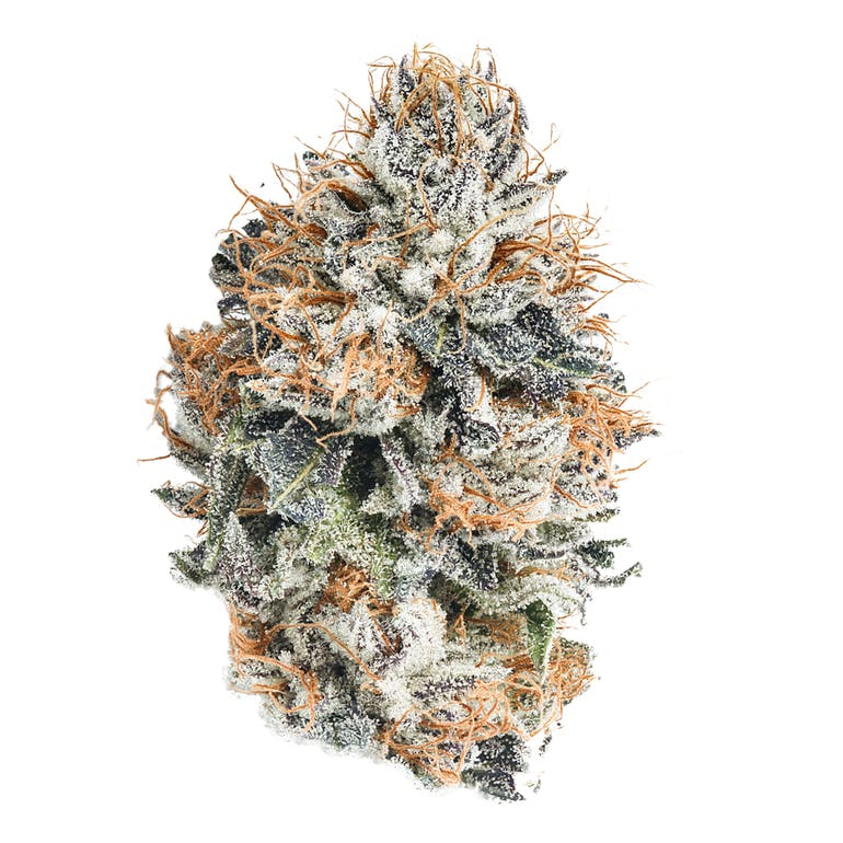 Blueberry | Product Image