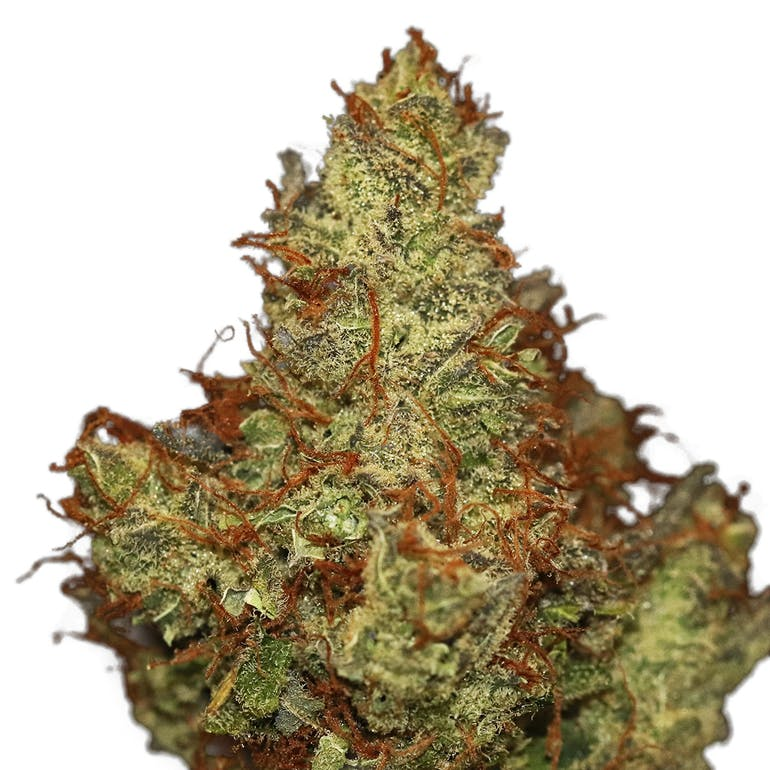 North Country Pharms Lime Soda