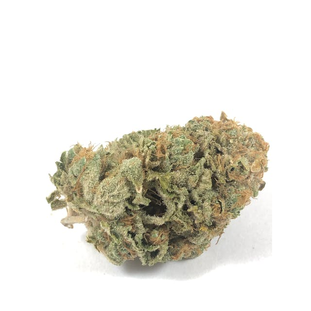 ATF EXOTIC: MIMOSA ( 5/$45 ) ( 10/$75 ) | Weedmaps