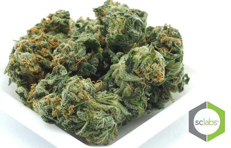 Petals and Pistils 7g of FLOWER - !!$40!!