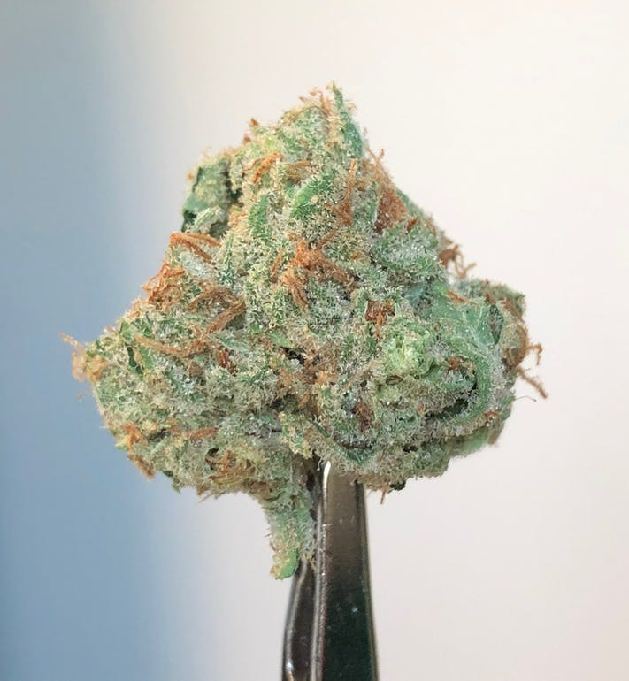 House of Green $45 1/8th's of Citral Glue!