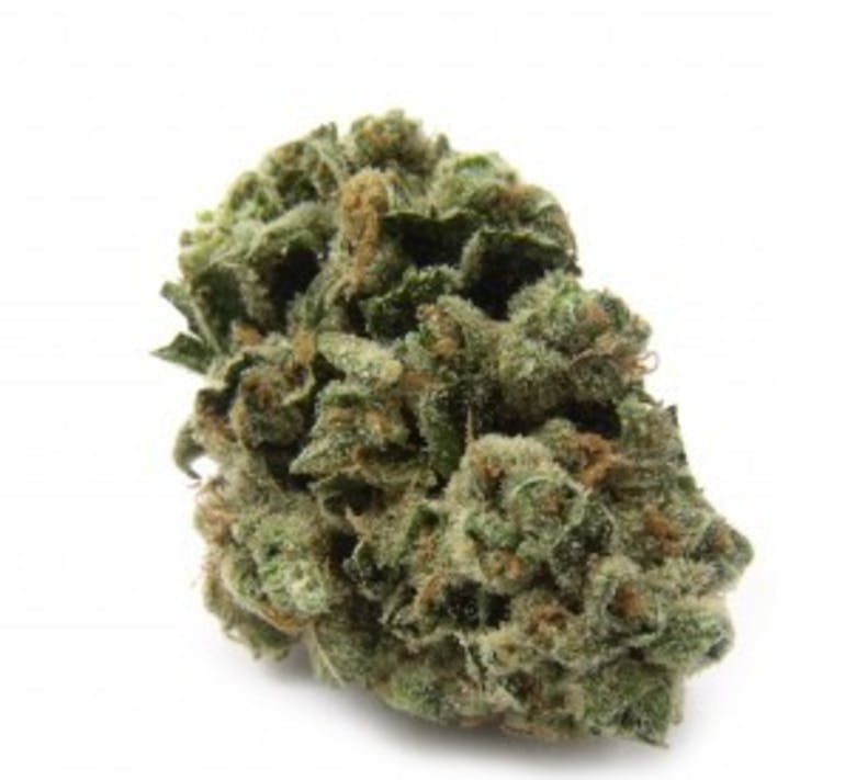 GTR GREEN TREE REMEDY PRIVATE RESERVE 8G FOR 50