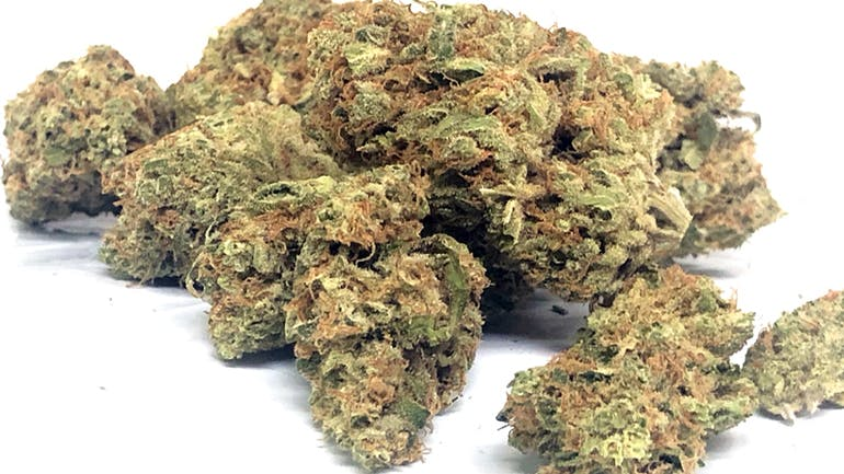 gLeaf Wellness Solutions HALF OZ. FLOWER SPECIALS=$99!