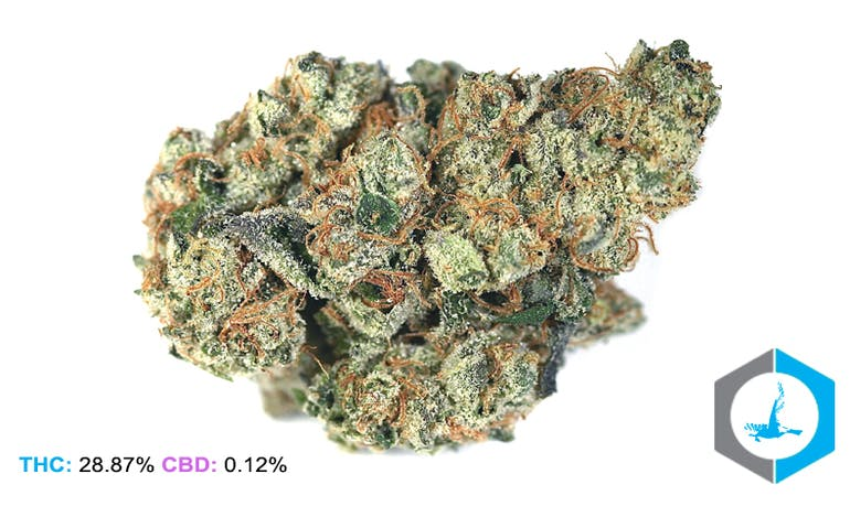 wedding cake strain weedmaps blue bird delivery irvine irvine ca reviews menu 25760