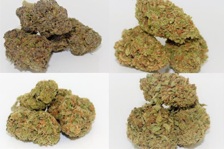 Green Gravity Collective Mix n Match 2 Half Oz for $100!