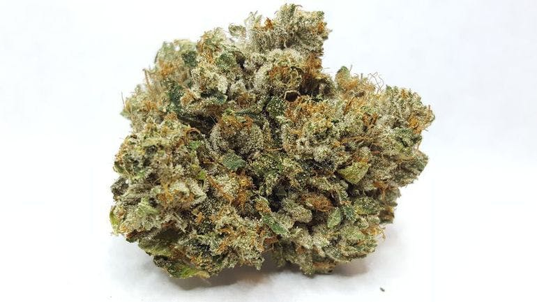 Unity Church of Cannabis 8G Exclusive $55