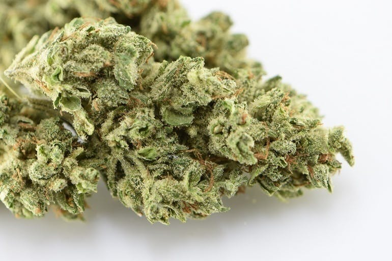 A Cut Above Now Enjoymint Strain of the Week 30% off!