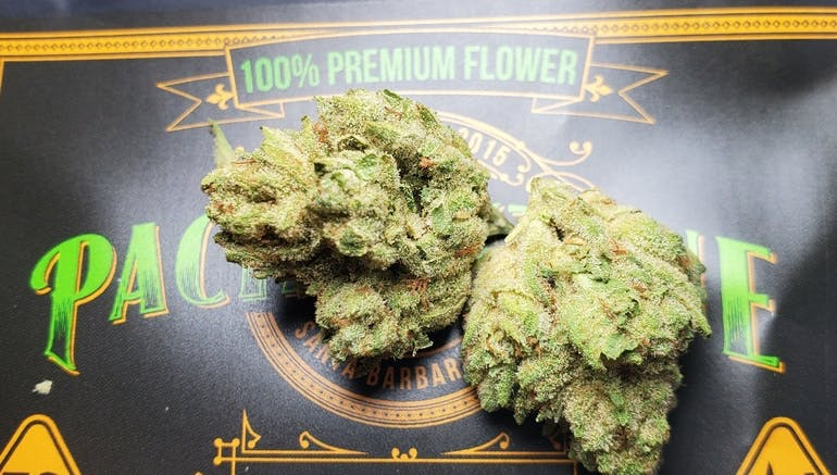 Golden Essentials Delivery - Salinas Glue 1oz $110