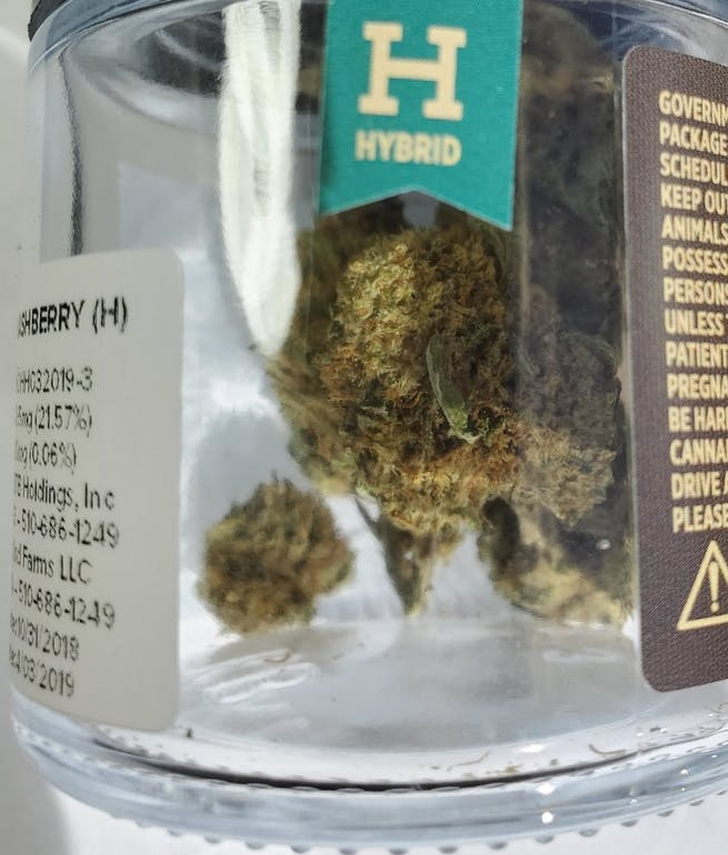 Golden Essentials Delivery - Salinas Chocolate Hashberry 1oz $132 21%